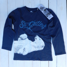Lion of Leisure polar l/s INDIGO